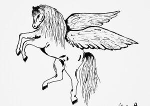 Pegasus' Flug