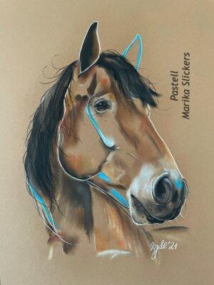 Rheinisches Kaltblut Pferd