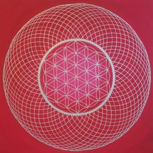 Blume des Lebens & Torus rot